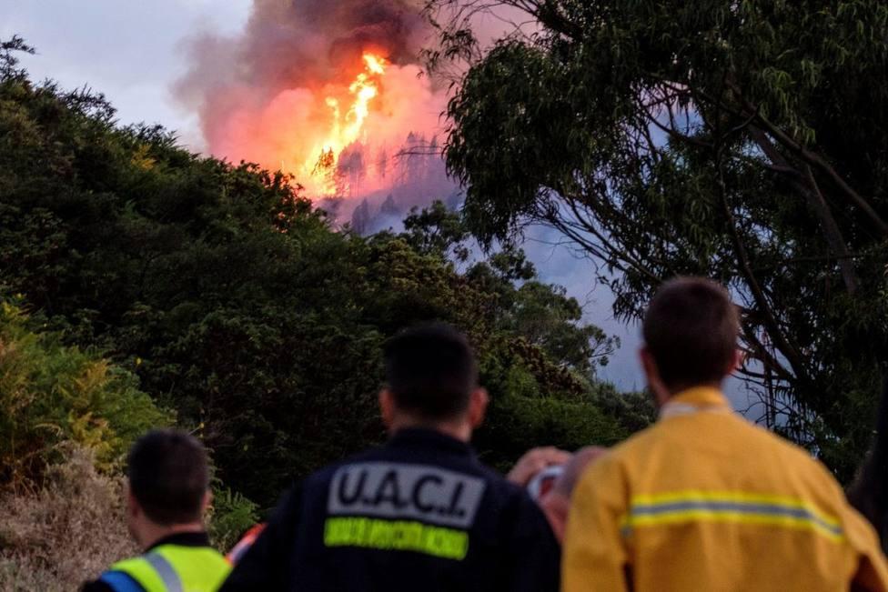 Gran Canaria sufre la voracidad de unos incendios que dejan ya más de 5.000 evacuados, noticias hoy