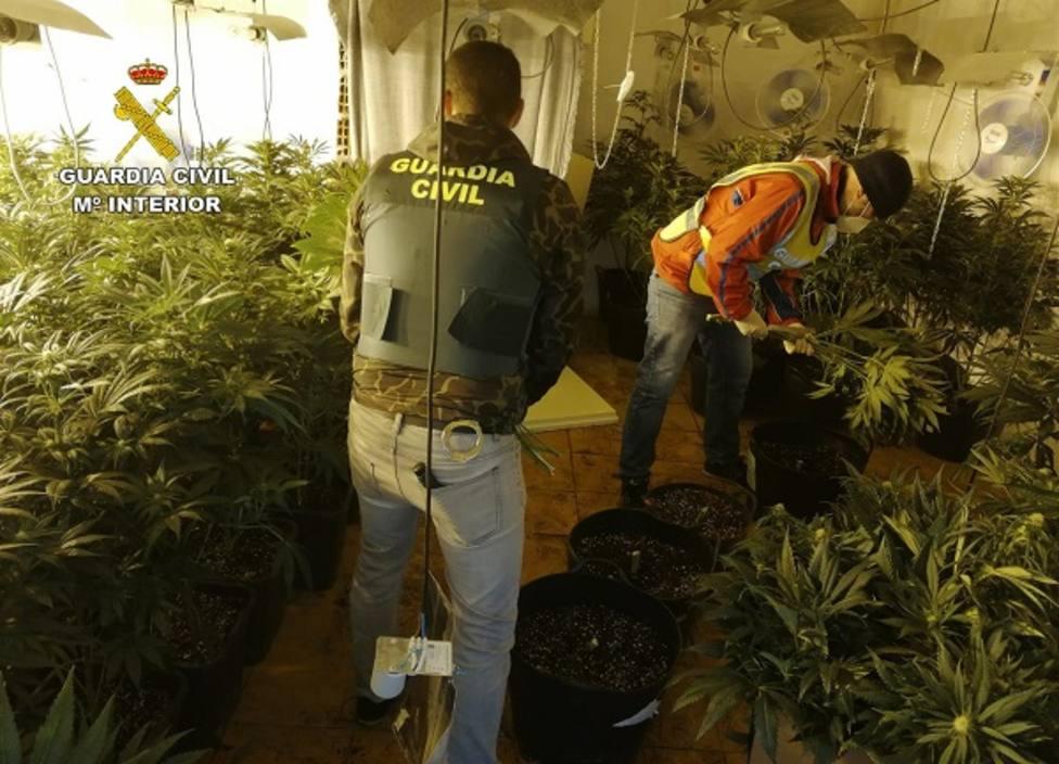 Detenidos 14 miembros de un clan familiar dedicado al tráfico de drogas en la comarca Mar Menor