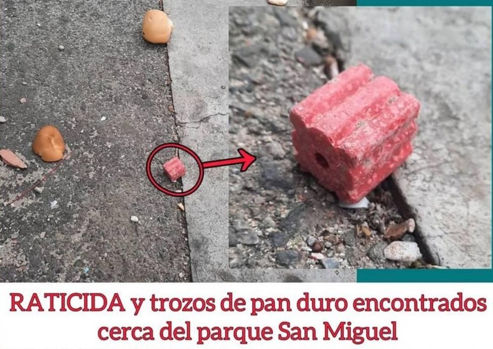Alerta en Logroño tras la detección de veneno por las aceras del parque San Miguel