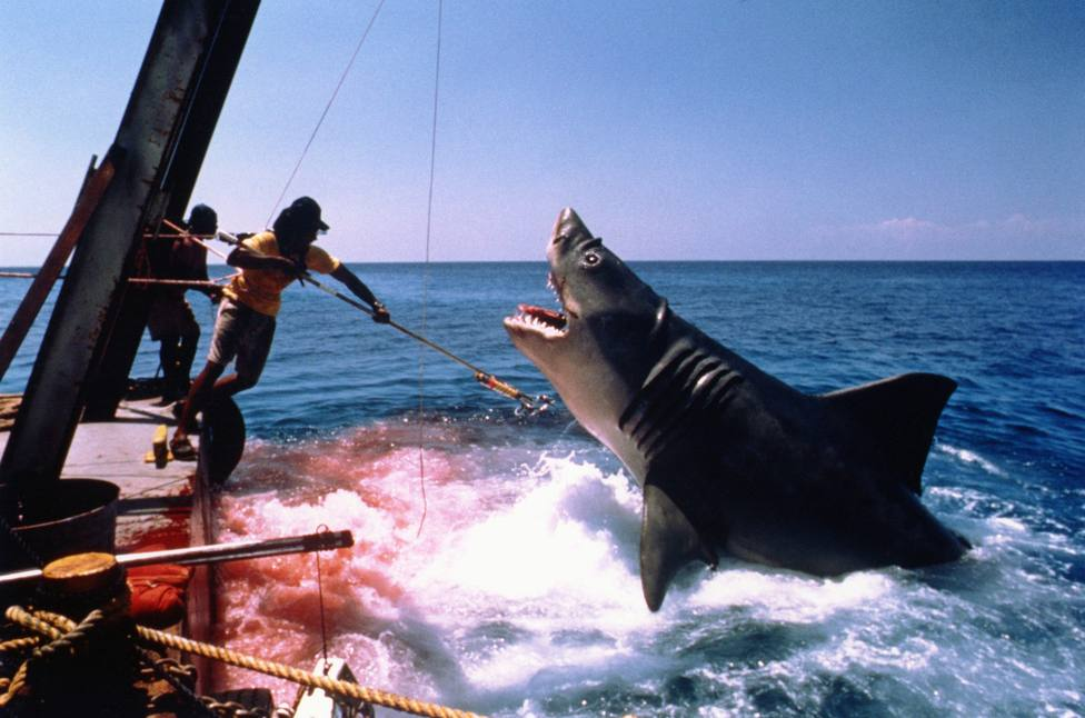 Especial cine: tiburones en la gran pantalla