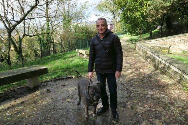 Ciudadanos pide que se prohíba el acceso de perros a la Muralla de Lugo