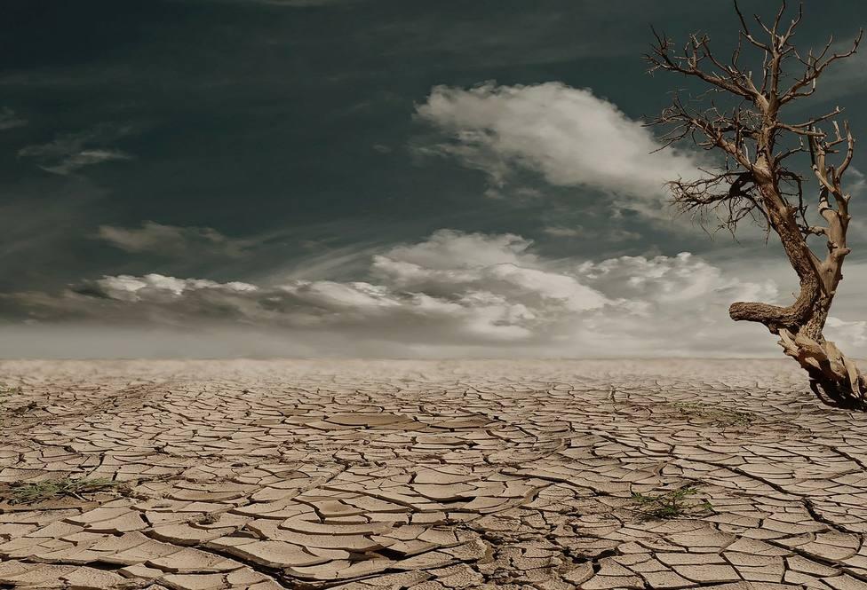 Quince millones de personas viven amenazados por la sequía