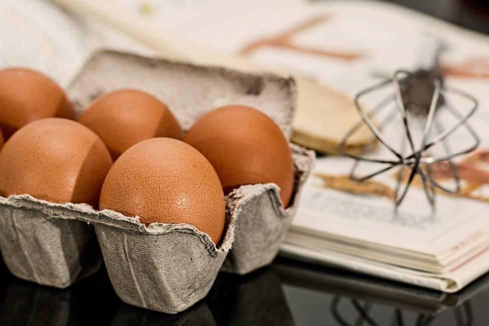 ctv-ril-egg-944495 1920