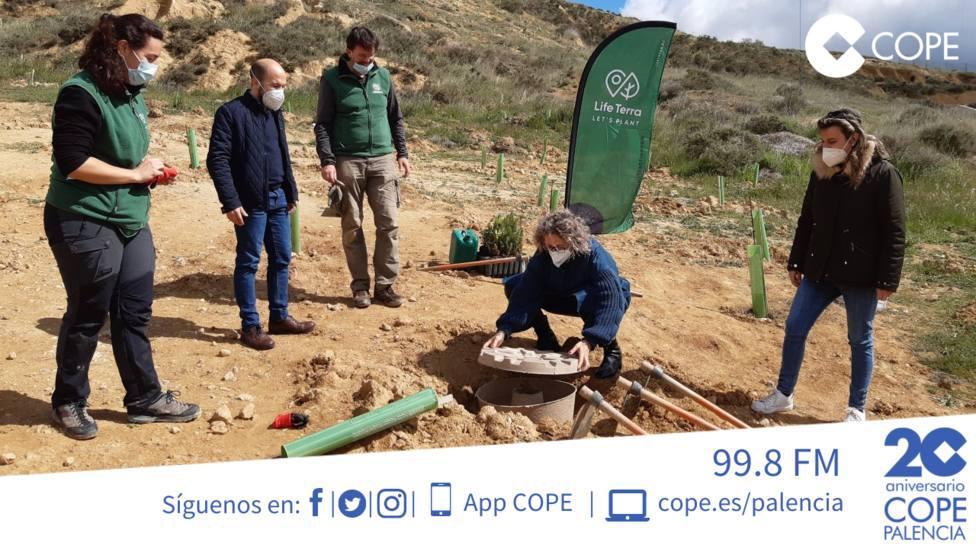 ctv-9mc-plantacion-4000-arboles-villlamuriel