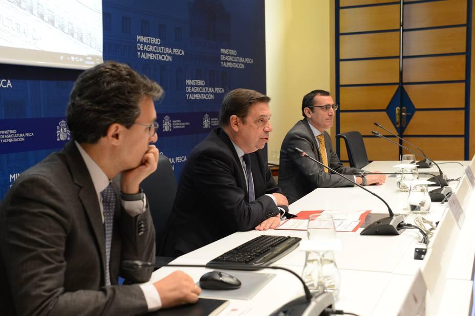 Planas ve necesario el trabajo conjunto de ciencia y administraciones de la UE para luchar contra la Xylella fastidiosa