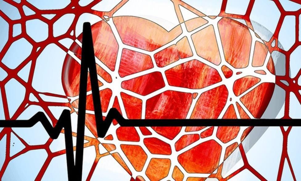 Investigadores exploran nuevas formas de curar el daño en el corazón después de un ataque cardiaco