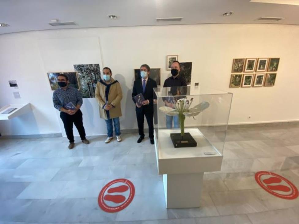 El Reactivo Cultural Donde crecen los Mirtos centra la programación del Museo de la Ciudad en noviembre