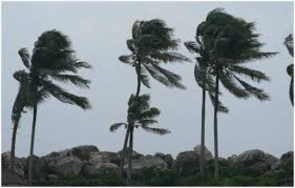 Las Palmas de Gran Canaria declara la situación de alerta por vientos
