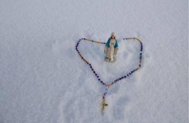 ctv-mj4-rosario