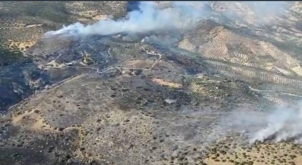 Un incendio quema 232 hectáreas de arbolado y matorral en la sierra de Cabra (Córdoba)
