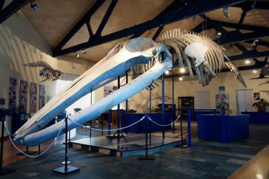 El museo de la SGHN se encuentra en el ferrolano barrio de Canido