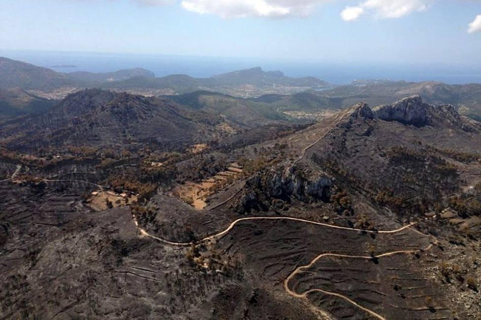 La Fiscalía pide 7 años de prisión para el causante del incendio de Andratx que arrasó 2.400 hectáreas