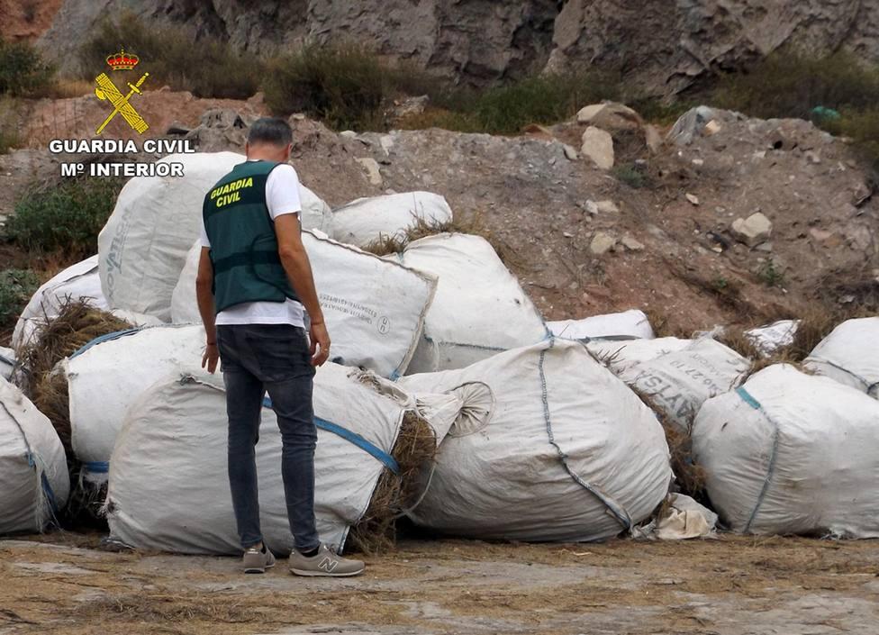 La Guardia Civil esclarece la sustracción de nueve toneladas de romero en Lorca