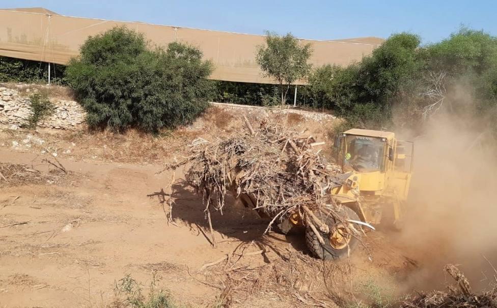 CHS invierte más de 800.000 euros en limpiar cauces de ramblas en el municipio de Cartagena