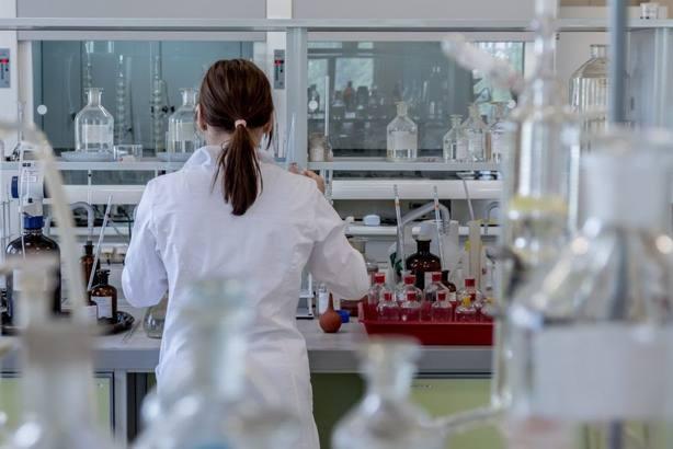 Los rectores españoles piden visibilizar a las científicas para convertirlas en referentes para las niñas