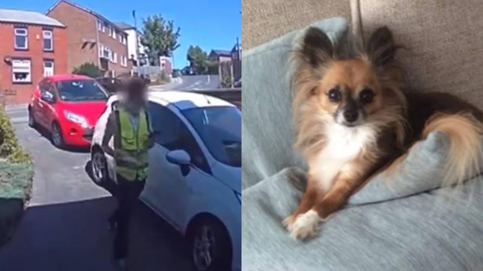 La reacción de un repartidor al escuchar a un perro