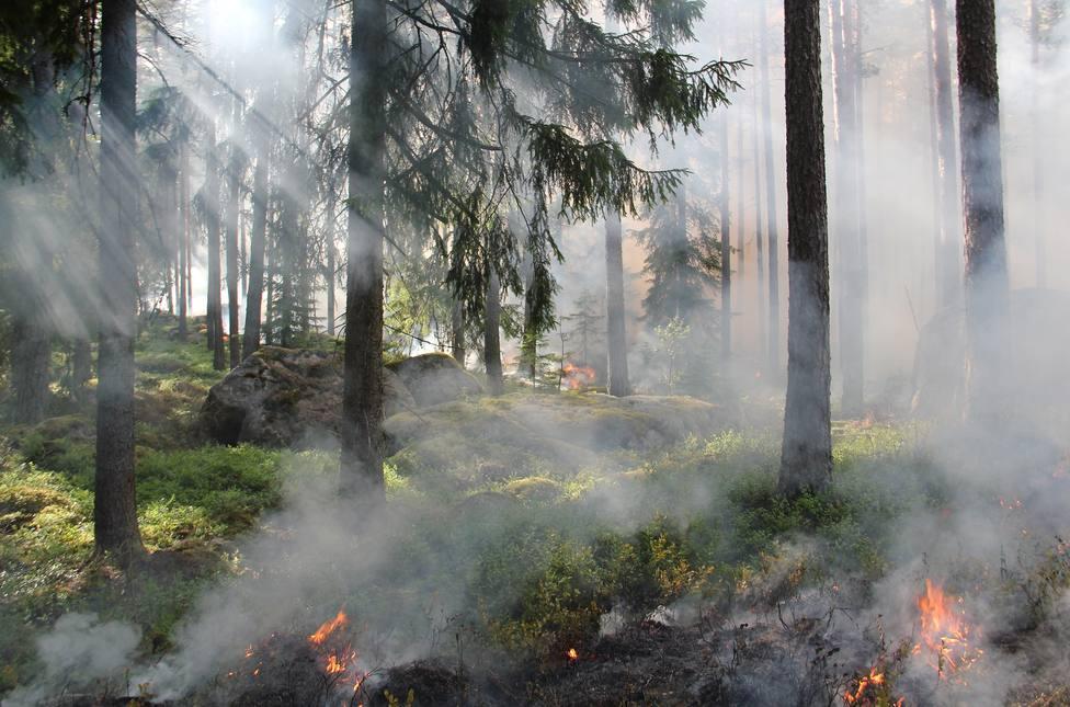 Se destinarán más medios para las labores de prevención de incendios y el Plan de Vialidad Invernal