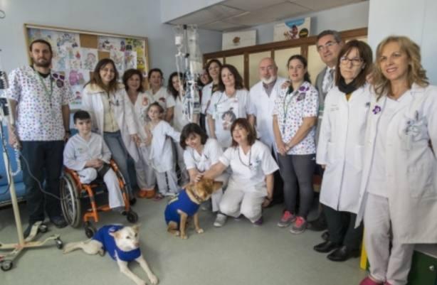 Garbanzo, Padi y Pecas forman la primera unidad de terapia canina de Andalucía