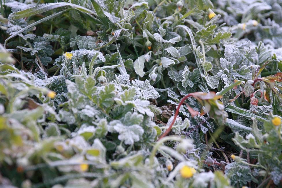 Castilla-La Mancha registra catorce incidencias por hielo y nieve durante la madrugada