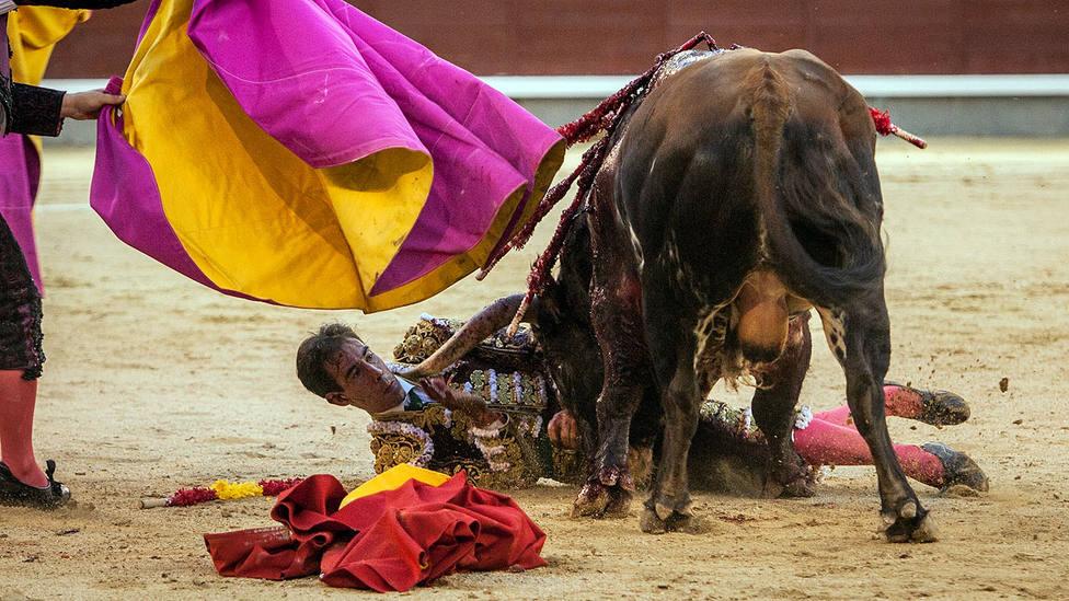 Momento del percance que sufrió Fortes en Las Ventas y de la que ha derivado su actual lesión
