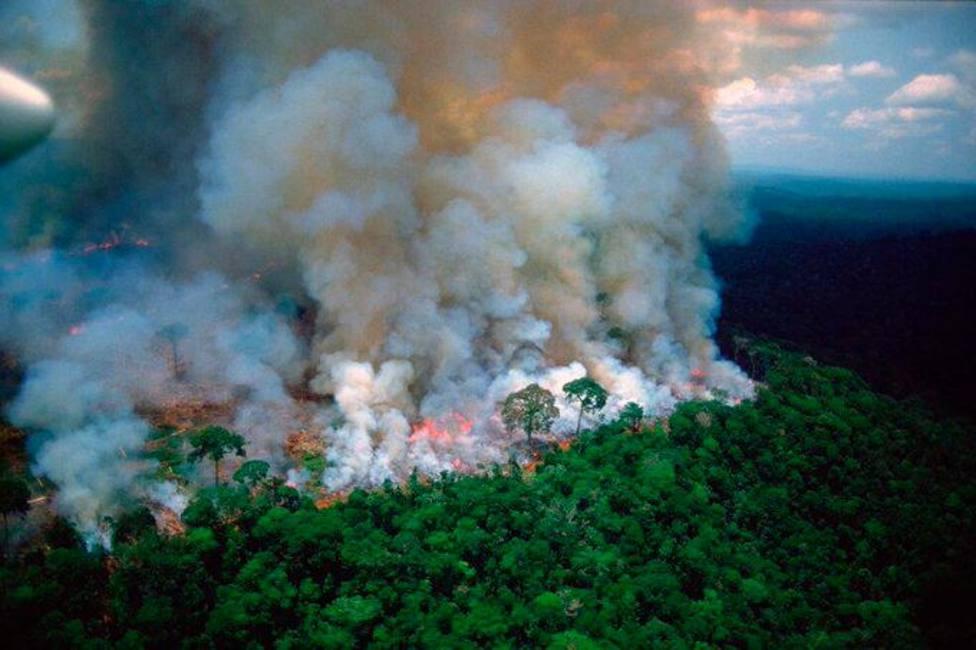 España ofrece ayuda a los países afectados por el incendio de la Amazonía que ha arrasado ya 700.000 hectáreas