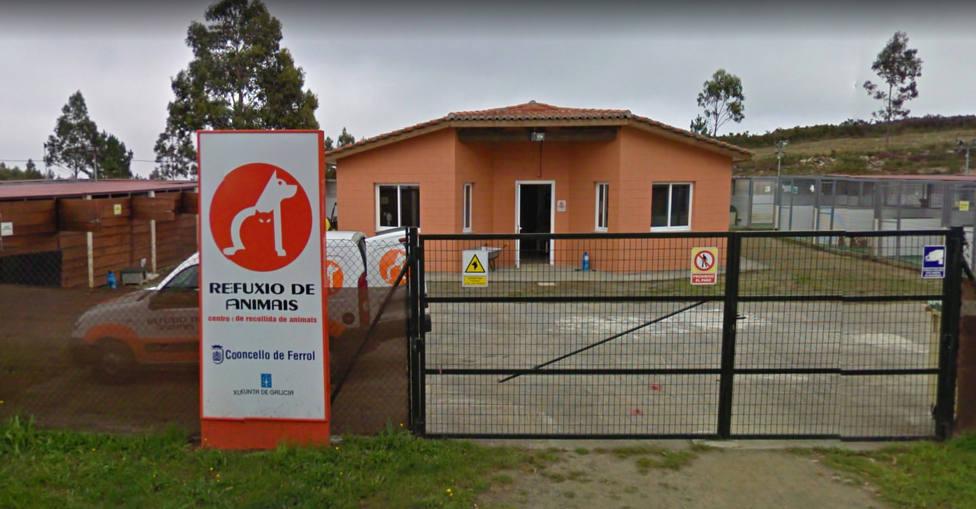 Refugio de animales de Mougá, en Ferrol