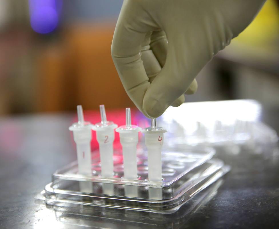 Test rápidos para la detección del COVID-19. FOTO: EFE/EPA/PIYAL ADHIKARY