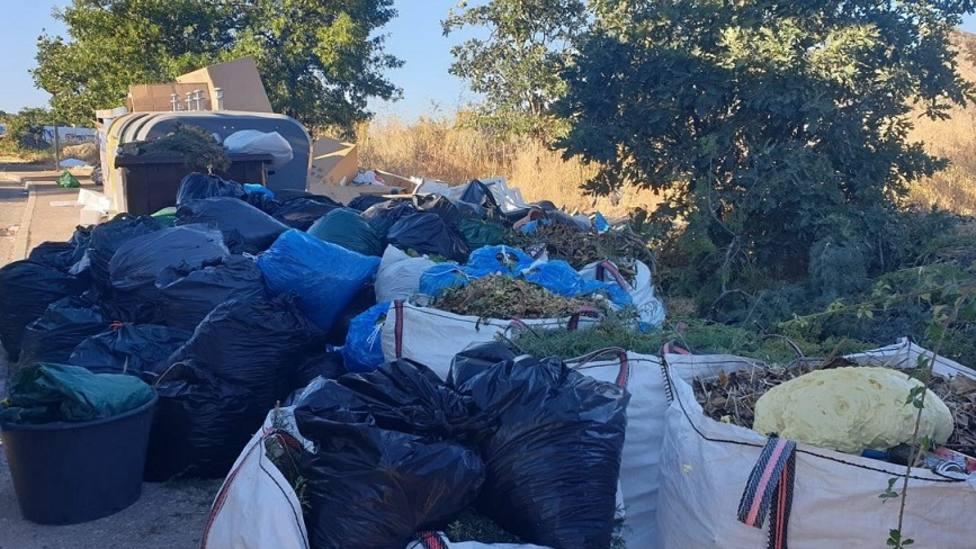 Bolsas con restos vegetales en torno a los contenedores en Los Molinos