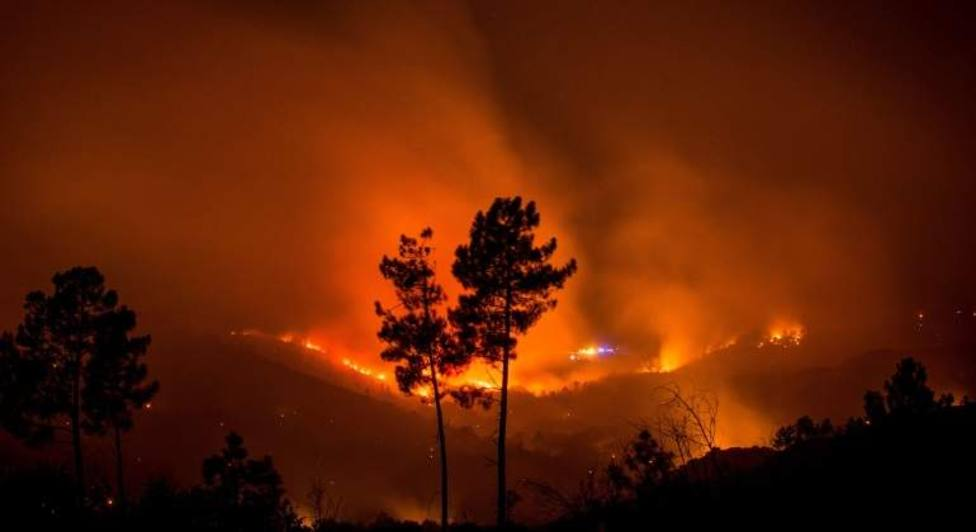 Casi 60.000 hectáreas han sido arrasadas por las llamas en 2019