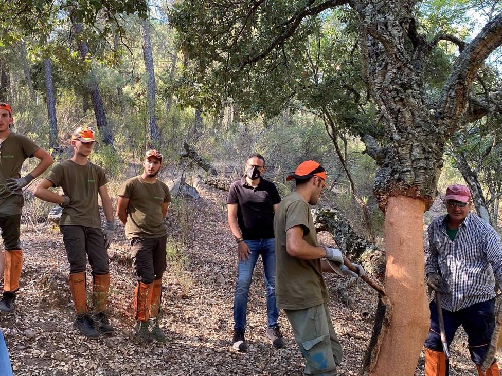 La Junta fomenta la formación y el empleo en torno al sector del corcho con la Escuela de Corcheros