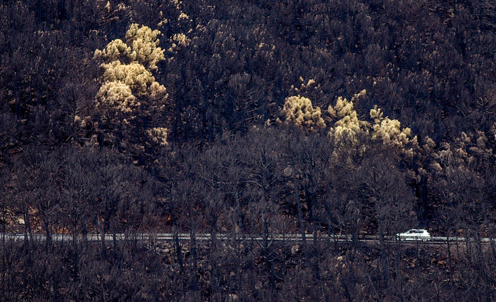 El incendio de Sierra Bermeja obliga al análisis del agua de localidades afectadas por las llamas