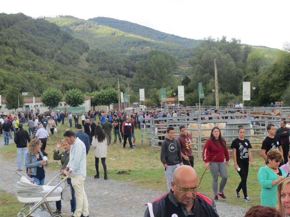 Feria Regional de Ganado de Villoslada de Cameros