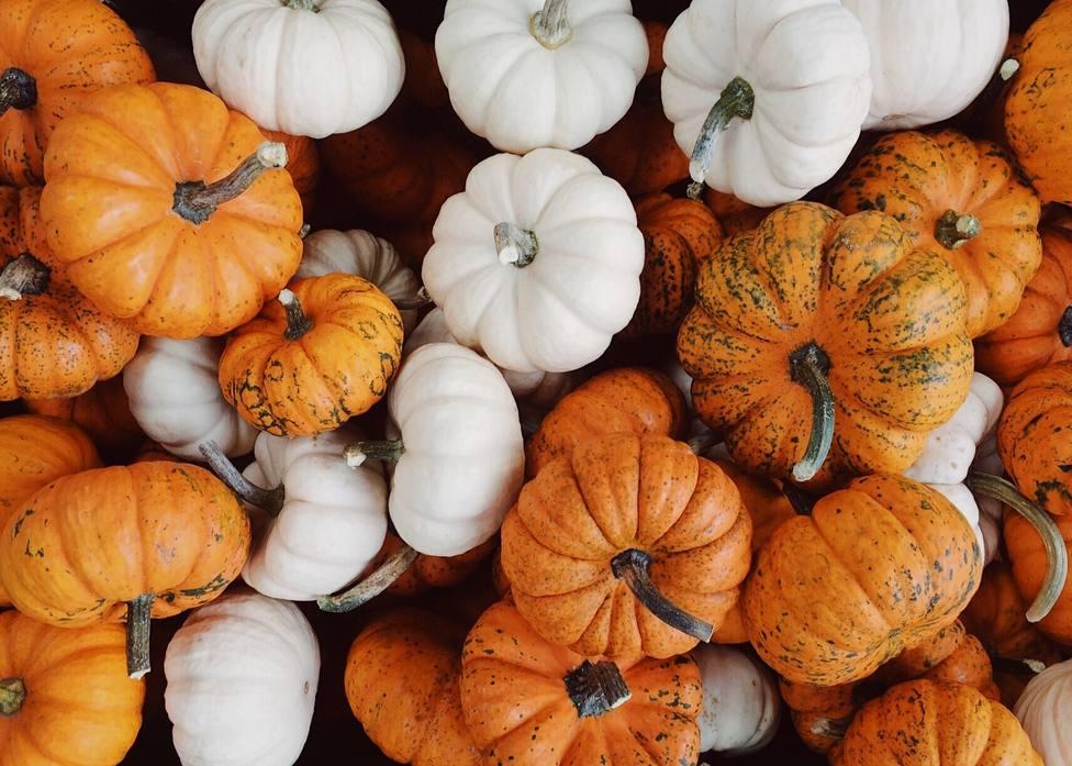 Estas son las desconocidas propiedades de los alimentos del otoño
