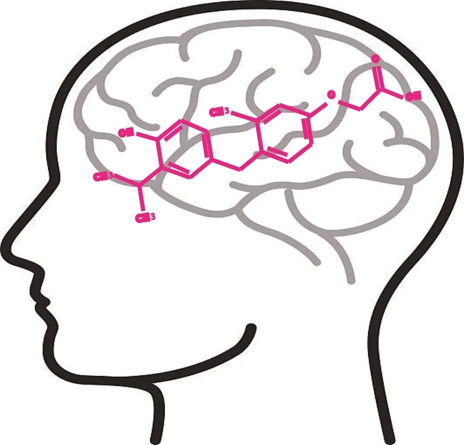Hallan el análogo de hormona tiroidea sobetirome como un posible fármaco para el síndrome de Allan-Herndon-Dudley