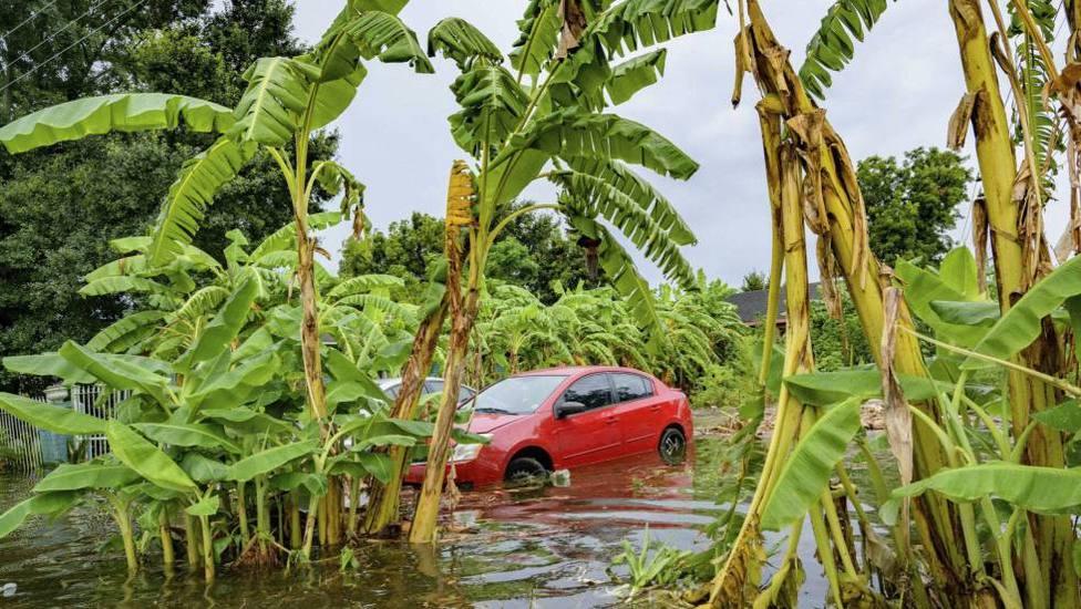La tormenta tropical Barry se acerca a Luisiana y se convertirá hoy en huracán
