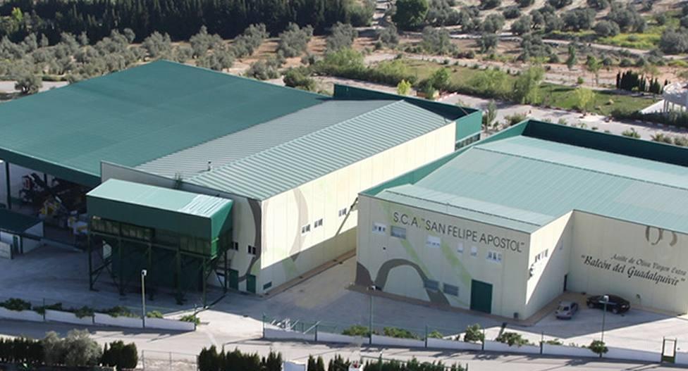 Grupo Interóleo incrementa la comercialización de aceite de oliva con la entrada de la SCA San Felipe Apóstol