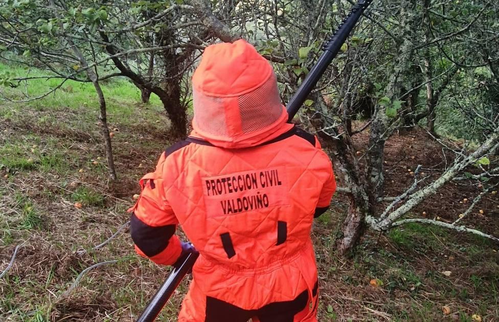 Los miembros de protección civil de Valdoviño contarán con nuevos métodos para luchar contra la velutina