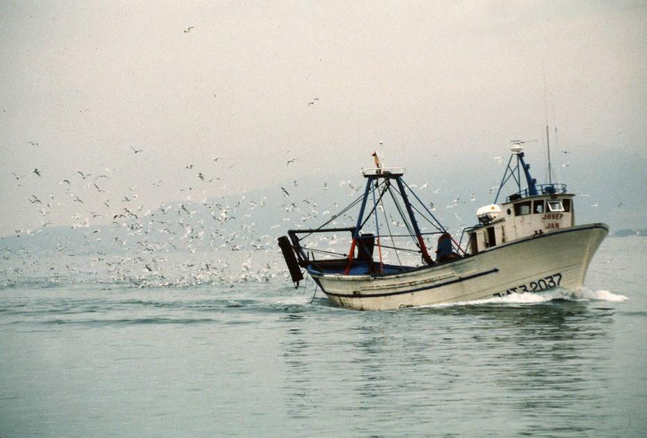 Pesca de bajura en la costa catalana. EFE
