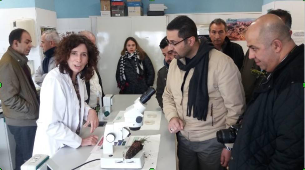 Profesores de Jordania reciben formación sobre técnicas innovadoras de aprendizaje activo y de e-learning