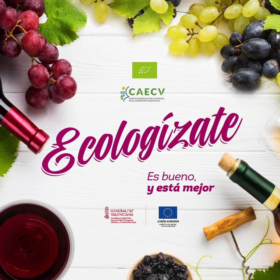ecologzate vino