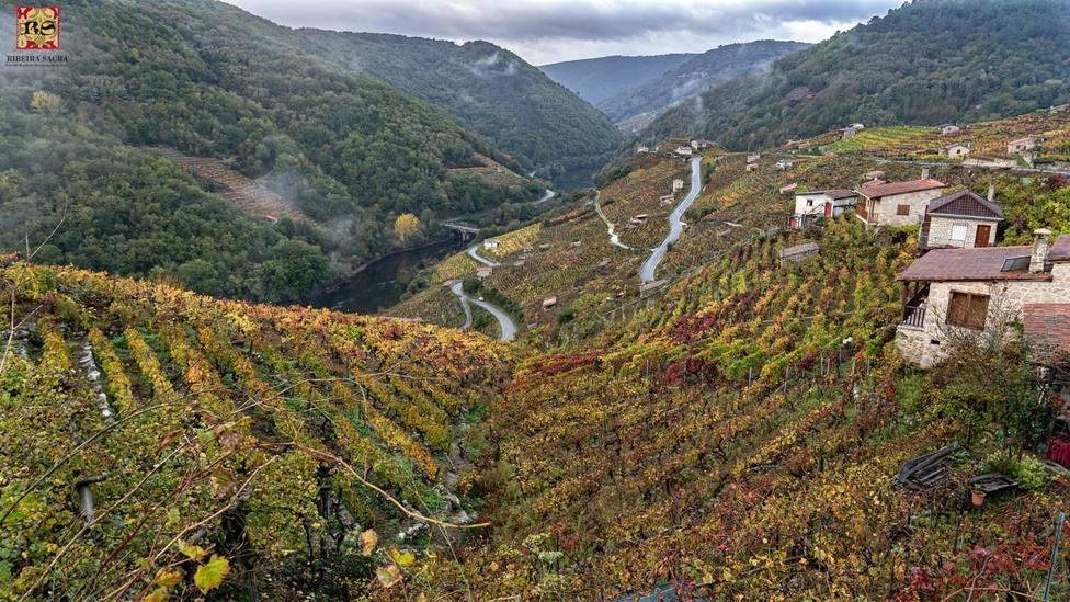 La Ribeira Sacra aspira a ser Reserva de la Biosfera y Patrimonio de la Humanidad