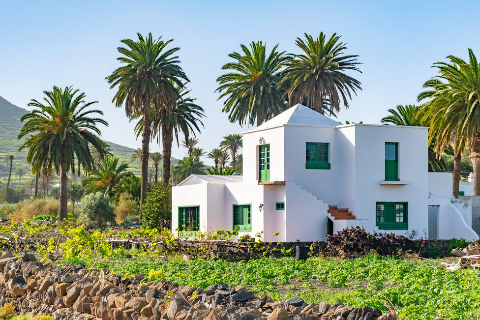 Beautiful,Typical,White,House,In,Haria,With,Palms,Background,,Lanzarote,