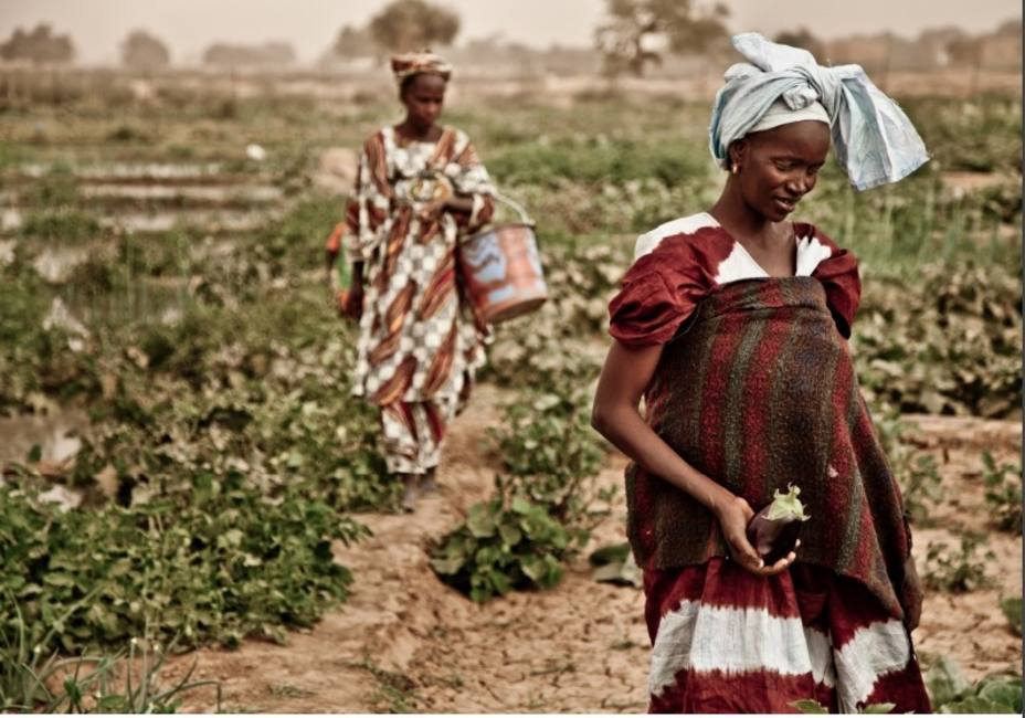 Oxfam exige a los Gobiernos medidas decisivas para combatir el cambio climático