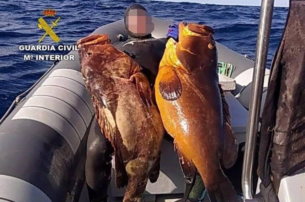 Desarticulado un grupo de siete pescadores furtivos en LanzaroteL