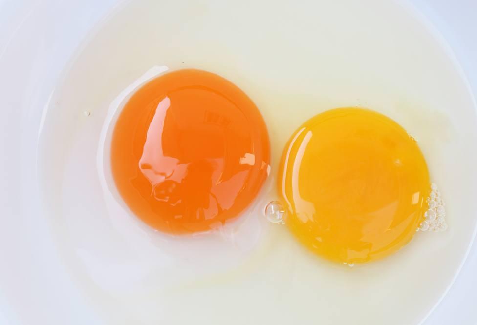 Dos colores diferentes de yema
