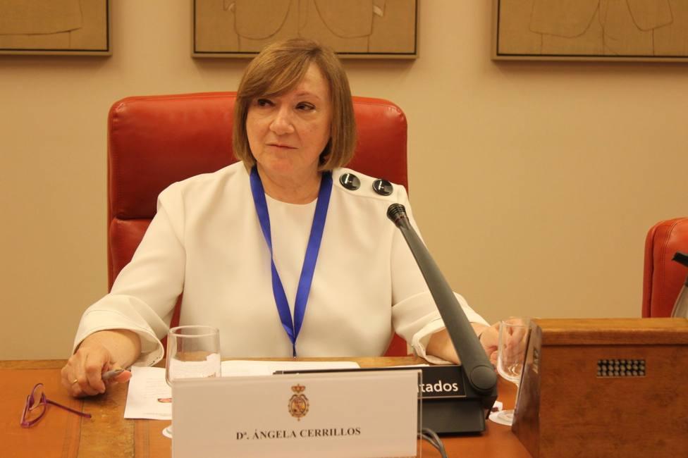 Ángela Cerrillos es diputada de la Junta de Gobierno del Colegio de Abogados de Madrid (ICAM)
