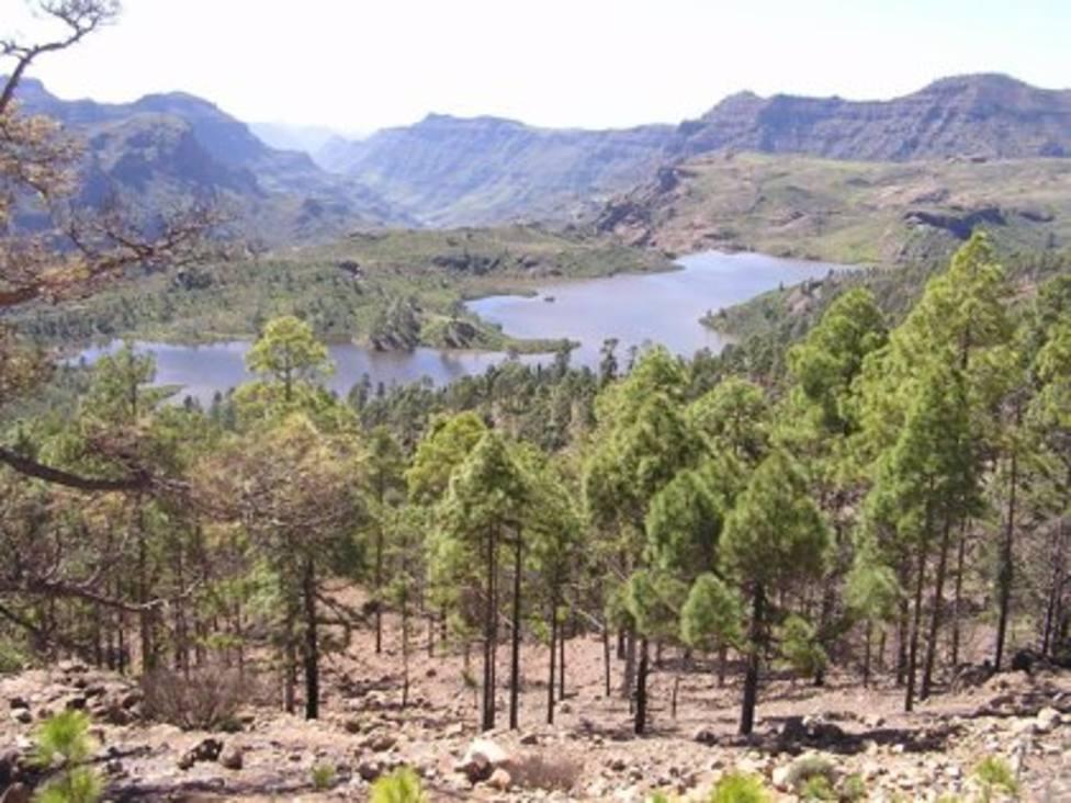 Presas Gran Canaria