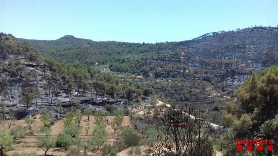 El Gobierno catalán avisa del riesgo de incendio por altas temperaturas en los próximos días