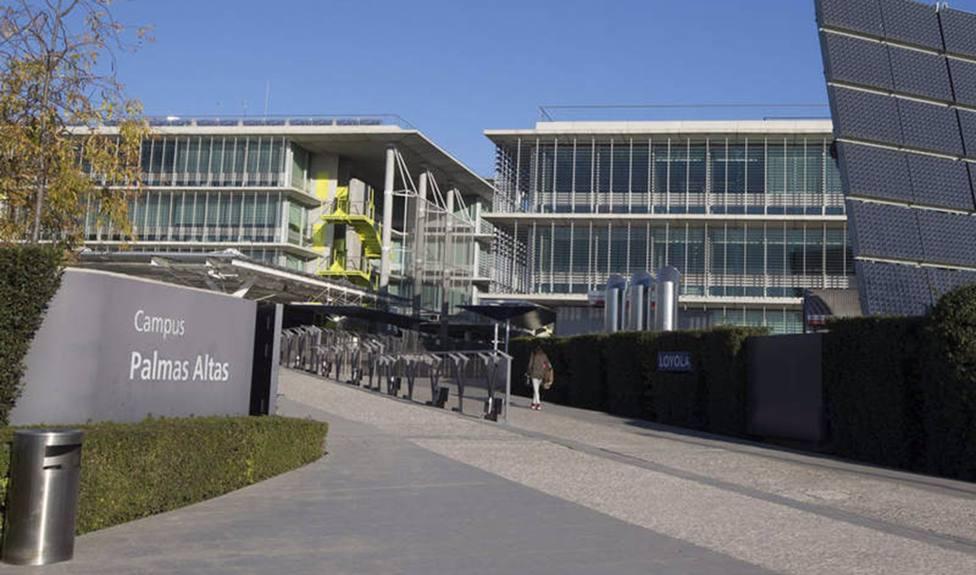 Sevilla.-Consejo.-El informe sobre la Ciudad de la Justicia ve Palmas Altas la mejor opción y primera fase en 2025