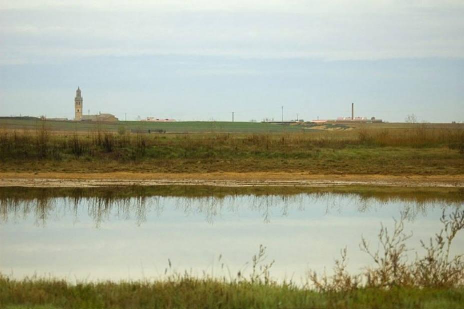 Humedal de la Nava